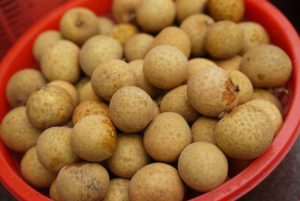 longan foodscream